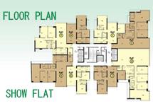 FLOOR PLAN & SHOW FLAT
